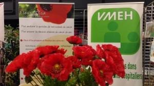 Fleur d'Isa et VMEH